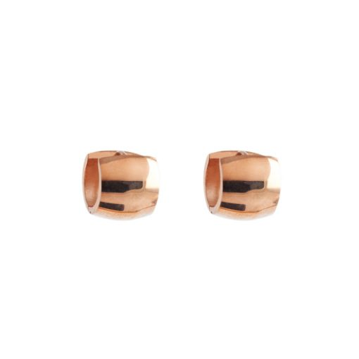 Halka Model Rose Gold Bayan Küpe BX973