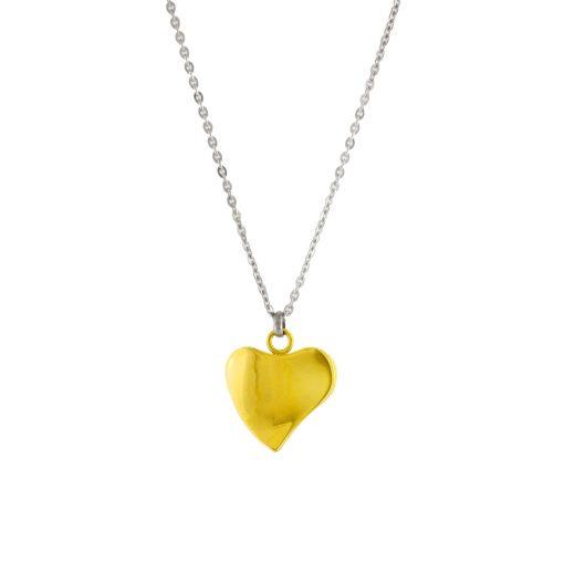 Altın Kaplamalı Kalp Model Modern Bayan Kolye EX368